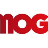 MOG's Anu Kirk